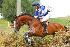 Horsebak del hombre en el salto del caballo rojo de la castaña Imagen de archivo libre de regalías
