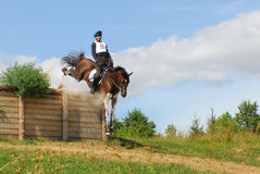 Horsebak del hombre en el salto del caballo rojo de la castaña Imagen de archivo