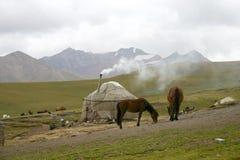horsecar гора стоковое изображение rf