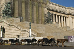 Horsecarts in front of the Parliament in Havana Stock Images