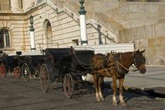 Horsecarts in front of the Parliament in Havana Stock Image
