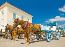 Horsedrawn taxis på ön av Spetses Royaltyfri Fotografi