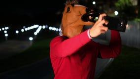 Horseface sending message stock video