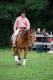 Horsefair Belgien 2010 lizenzfreies stockbild