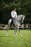 Horsefair Belgien 2010 stockfotos