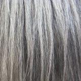 Horsehair Stock Photo