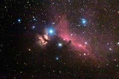 Horsehead и межзвёздное облако пылая дерева, в созвездии Ориона, млечный путь стоковые фото