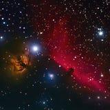Horsehead и межзвёздное облако пламенеющего дерева в космосе Стоковая Фотография RF