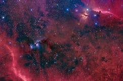 Horsehead, flama e M78 em Orion Foto de Stock