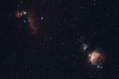 Horsehead, flamma och Orion Nebula fotografering för bildbyråer