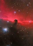 HorseHead Nebelfleck Stockfotografie