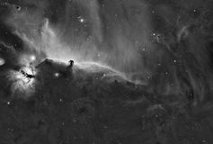 Horsehead-Nebelfleck-Komplex - Widefield stockfoto