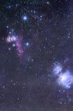 Horsehead och Orion Nebula Arkivbilder
