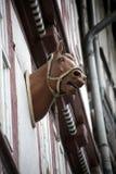 Horsehead op de voorzijde stock foto
