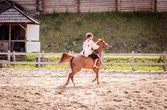 horseman immagini stock