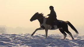 horseman archivi video