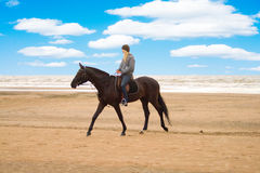 Horseman. Rides on a beach Royalty Free Stock Image