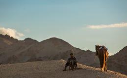 horseman Stock Foto's
