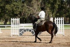 The horseman on a bay horse. Hippodrome Royalty Free Stock Photos