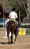The horseman on a bay horse. Stock Photo