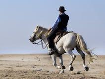 Horseman on the beach Royalty Free Stock Photos