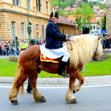 Horseman during Brasov Juni parade Stock Photo