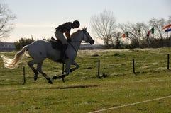 Horseman galloping royalty free stock photos