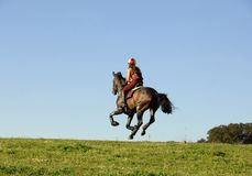 Horseman galloping. At high speed in horse racing Stock Photography