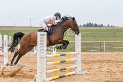 Horseman jumping on a brown horse Stock Photography