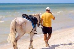 Horseman Stock Images