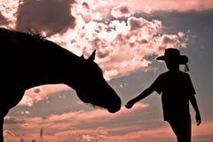 Horseman's Handshake Royalty Free Stock Photography