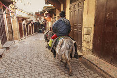 Horseman in the street of fez Royalty Free Stock Photo