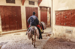 Horseman in the street of fez Royalty Free Stock Photography