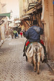 Horseman in the street of fez Stock Photography