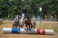 Horseman stunt with horses in contest jumping over barrels. Horseman stunt with bow on the 4 horses during a horse track contest and horse show in Romania royalty free stock images
