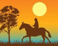 Horseman on Stock Photo