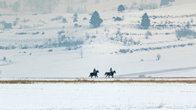 Horseman in winter. Couple of horseman doing a walk during winter Royalty Free Stock Image