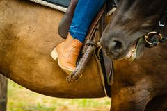 Woman foot in stirrup on horse saddle Stock Photo
