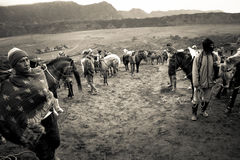 Horsemen of Bromo volcano, Bromo, Indonesia Royalty Free Stock Photography
