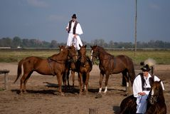 Horsemen, Bugac, Hungary Royalty Free Stock Photo