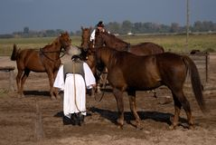 Horsemen, Bugac, Hungary Royalty Free Stock Photography