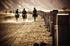 Horsemen riding in Desert, going back to home Stock Photos