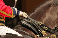Traditional army horsemen of the Royal Dutch Cavalry. Horsemen of the Royal Dutch Cavalry, The Netherlands Stock Images