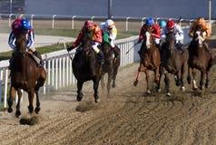 Horserace-1 Arkivfoton