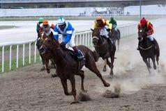 Horserace-10 Royalty Free Stock Photos