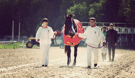 horserace奖 免版税库存照片