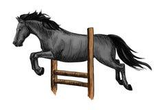 Horserace. Equine sport racing symbol Stock Photography
