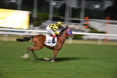Horserace Hong Kong Stock Images