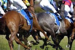 Horserace Lack-Läufer 01 Stockfotografie