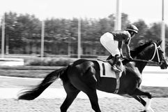 The horserace for the prize  Royalty Free Stock Photos
